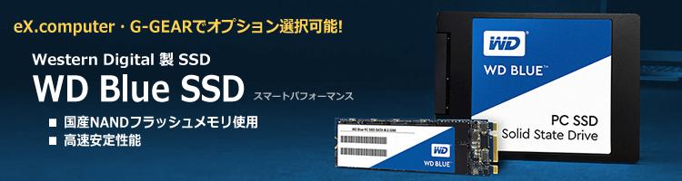 BTOオプション WD Blue SSD